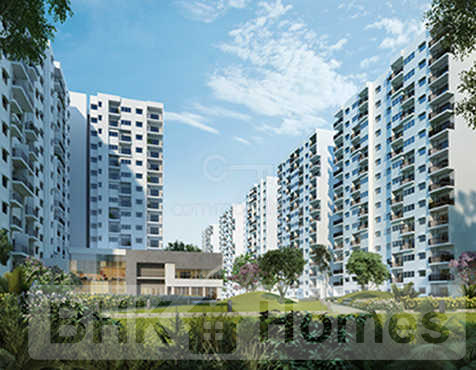 4 BHK Apartment for Sale in Hebbal